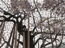 満開の金剛桜(1).jpg