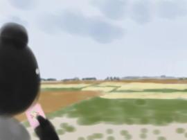 麦秋の車窓(1).jpg