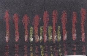 1214-2.jpg