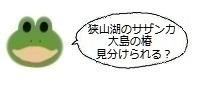 エルアイコン0119.jpg