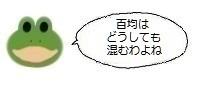 エルアイコン0224.jpg