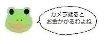 エルアイコン91024.jpg