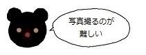 ミーアイコン1217.jpg