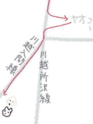 ヤオコーから川越入間線へ.jpg