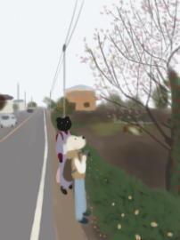 川越入間線の冬桜(1).jpg